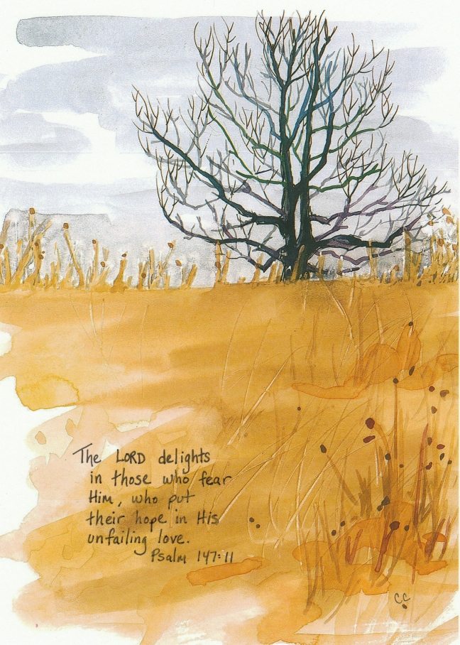 Delights_Psalm147_11