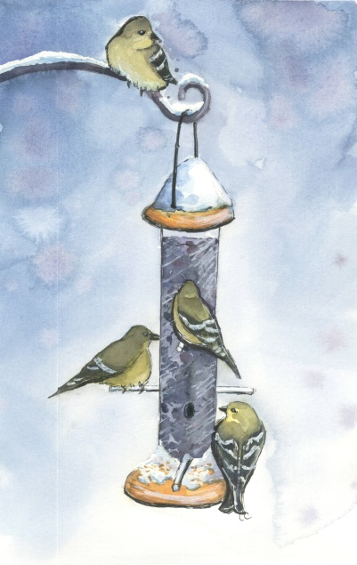 2016_12_18_winter_goldfinches_at_feeder