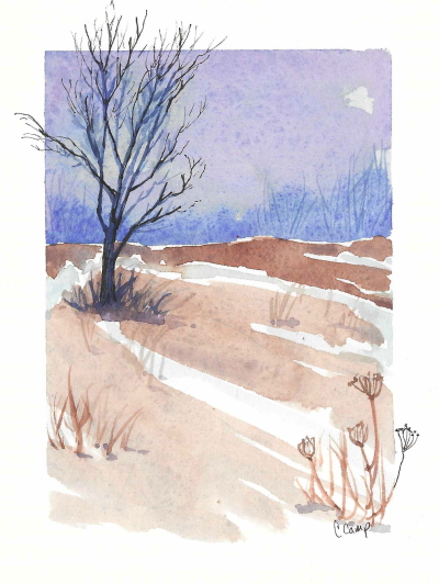 winter watercolor of tree and field