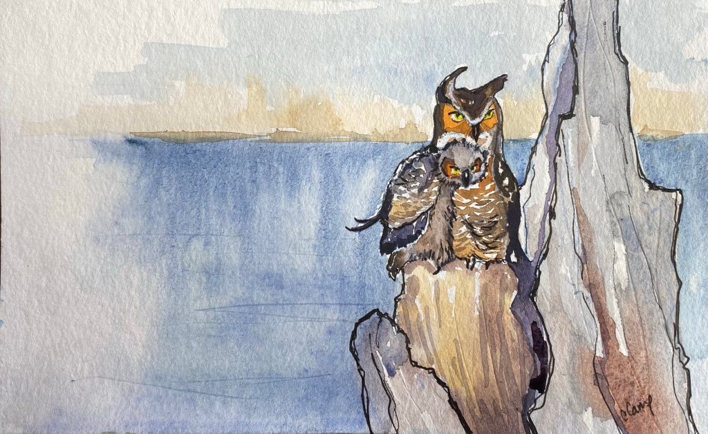 Watercolor of baby and momma great horned owl